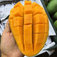 【山东蓬莱馆】进口越南大青芒青芒芒果 新鲜水果5斤装3到5个左右包邮