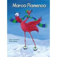 【预订】Marco Flamenco