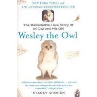 【预订】Wesley the Owl: The Remarkable Love Story of an Owl