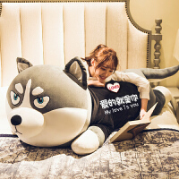 毛绒玩具熊哈士奇公仔布娃娃女孩可爱二哈毛绒玩具狗熊玩偶睡觉抱枕520礼物