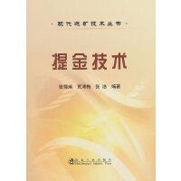 提金技术__现代选矿技术丛书