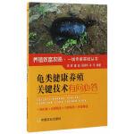 龟类健康养殖关键技术有问必答