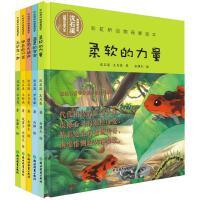 彩虹桥动物母爱绘本(第二辑共5册)