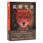 正版全新 狐狸男孩