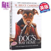【中商原版】小狗归家之路(一只狗的使命作者新作)英文原版 A Dog's Way Home Bruce Cameron W布鲁斯卡梅伦新作 只想回到你身边