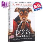 【中商原版】小狗归家之路(一只狗的使命作者新作)英文原版 A Dog's Way Home Bruce Cameron