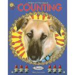 【预订】Bellaboo & B-Bug's Book of Counting