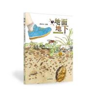 地面地下:四季昆虫微观图记(精装绘本) 邱承宗 文/图