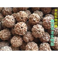 尼泊尔大金刚菩提子原籽通货批�l4四5五6六瓣散珠同树手串108颗斤