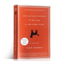 【全店300减110】英文原版小说 The Curious Incident of the Dog in the Nig