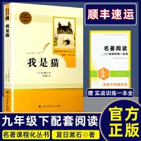 我是猫 夏目漱石著 人民教育出版社 九年级下册语文课本教材配套辅导资料书 初三课外名著阅读 人教版九年级下我是猫