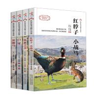 白牙、红脖子・小战马、黑骏马、丛林之书-世界优秀动物小说选(四本套装)