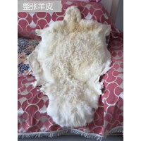 冬长羊毛皮毯子整张绵羊皮地毯皮毛一体坐垫靠背飘窗电脑椅垫沙发