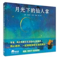 月光下的仙人掌(魔法象・图画书王国)