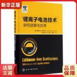 锂离子电池技术――研究进展与应用 [意]詹弗兰科・皮斯托亚(Gianfranco Pistoia) 化学工业出版社97