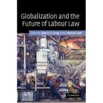 【预订】Globalization and the Future of Labour Law Y97805211734
