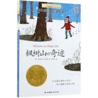 枫树山的奇迹/长青藤国际大奖小说书系
