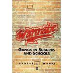 【预订】Wannabe - Gangs In Suburbs And Schools
