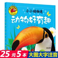 动物好有趣 小小动物迷 大图大字我爱读 注音版0-3-6岁幼儿童动物大世界科普百科读物 亲子启蒙认知早教绘本故事书籍