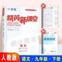 2020春 精英新课堂 9/九年级下册 语文 RJ人教版 阳光出版社