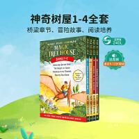 英文原版章节书 The Magic Tree House 神奇树屋第1-4册盒装 美国中小学推荐课外阅读读物 巩固英语