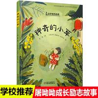 精装绘本图画书 科学家的故事系列 神奇的小草屠呦呦的故事 为我们展现一位诺贝尔自然学奖科学家的成长之路科学家的故事儿童文
