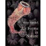 【预订】Art Forms in Nature: Prints of Ernst Haeckel