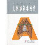 【新书店正版】人体解剖学图谱徐国成9787509140376人民军医出版社