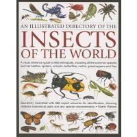 【预订】An Illustrated Directory of the Insects of the World: A