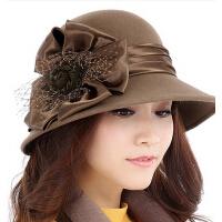 韩版时尚英伦 优雅礼帽冬季帽子 女秋冬天帽子羊毛定型毡帽