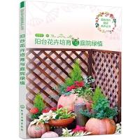 正版全新 园艺花卉栽培养护丛书--阳台花卉培育与庭院绿植