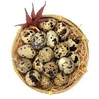 农谣 鹌鹑蛋 50枚 新鲜散养土鹌鹑蛋 非鸽子蛋土鸡蛋
