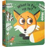英文原版 Little Faces Fox Is Up To Something 儿童英语启蒙 动物认知 纸板操作书