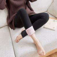 蚕丝冬季保暖棉裤加绒加厚打底裤一体裤女高腰外穿显瘦连裤袜