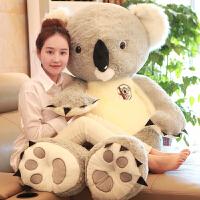 树袋熊考拉毛绒玩具儿童布娃娃玩偶抱抱熊公仔送女孩生日礼物