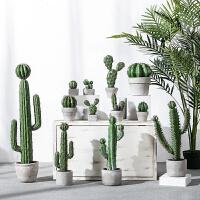 创意家居仿真植物装饰仙人掌盆栽室内绿植办公室落地仙人柱