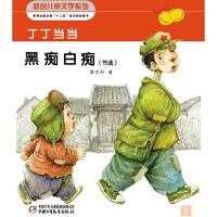 丁丁当当之黑痴白痴(节选)(多媒体电子书)