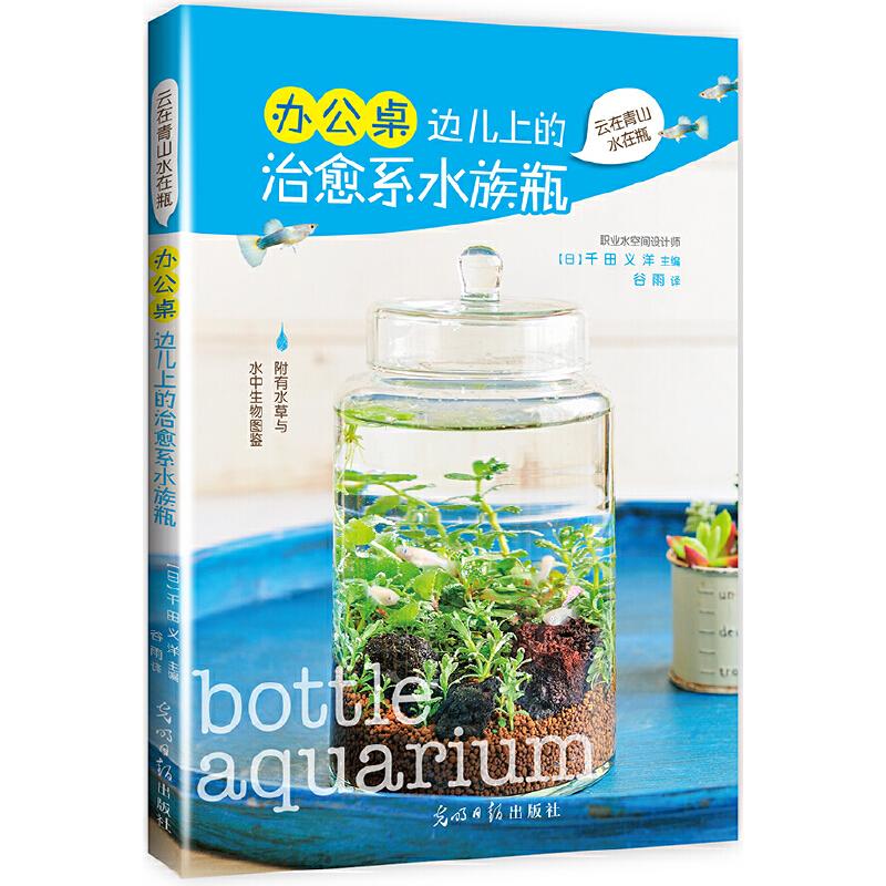 办公桌边儿上的治愈系水族瓶 (轻轻打开一片海,水草摇曳,鱼儿悠游)