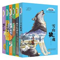 动物小说大王沈石溪:野生动物救助站(套装1-6)