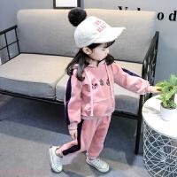 冬季女宝宝双面绒套装秋冬装0-1-2-3-4-5岁婴儿童装女童运动套装新款秋冬新款 粉色2件套