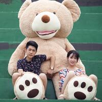 大熊毛绒玩具抱抱熊布娃娃熊公仔生日礼物
