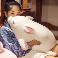 可爱暖手抱枕少女心公仔玩偶女生毛绒布娃娃睡觉捂手枕礼物 70cm暖手款