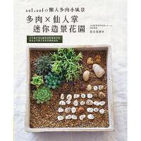 预售 《多肉×仙人掌迷你造景花园:sol × sol的懒人多肉小风景》喷泉