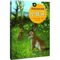 【全新直发】小战马/西顿动物故事集 (加)欧内斯特?汤普森?西顿