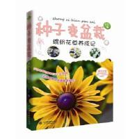 【正版直�l】�N子�盆栽――�_�花草�B成� 自在 9787517022299 水利水�出版社