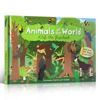 英文原版 Animals of the World Lift-The-Flap Book 动物世界 科普读物3-6岁儿