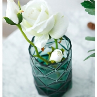 几何玻璃花瓶现代简约家居摆设水培植物花瓶花艺花器