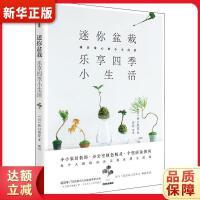 迷你盆栽,乐享四季小生活 [日]桥口梨花 9787521703092 中信出版社
