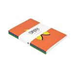 Chineasy Notebooks 中文易笔记本 外国人学汉语 学习笔记 ShaoLan