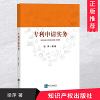 专利申请实务 知识产权出版社